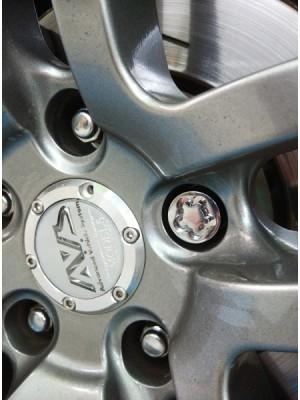 Installed Premium Wheel Lock