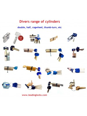 Diverse Brands & Types of Cylinders